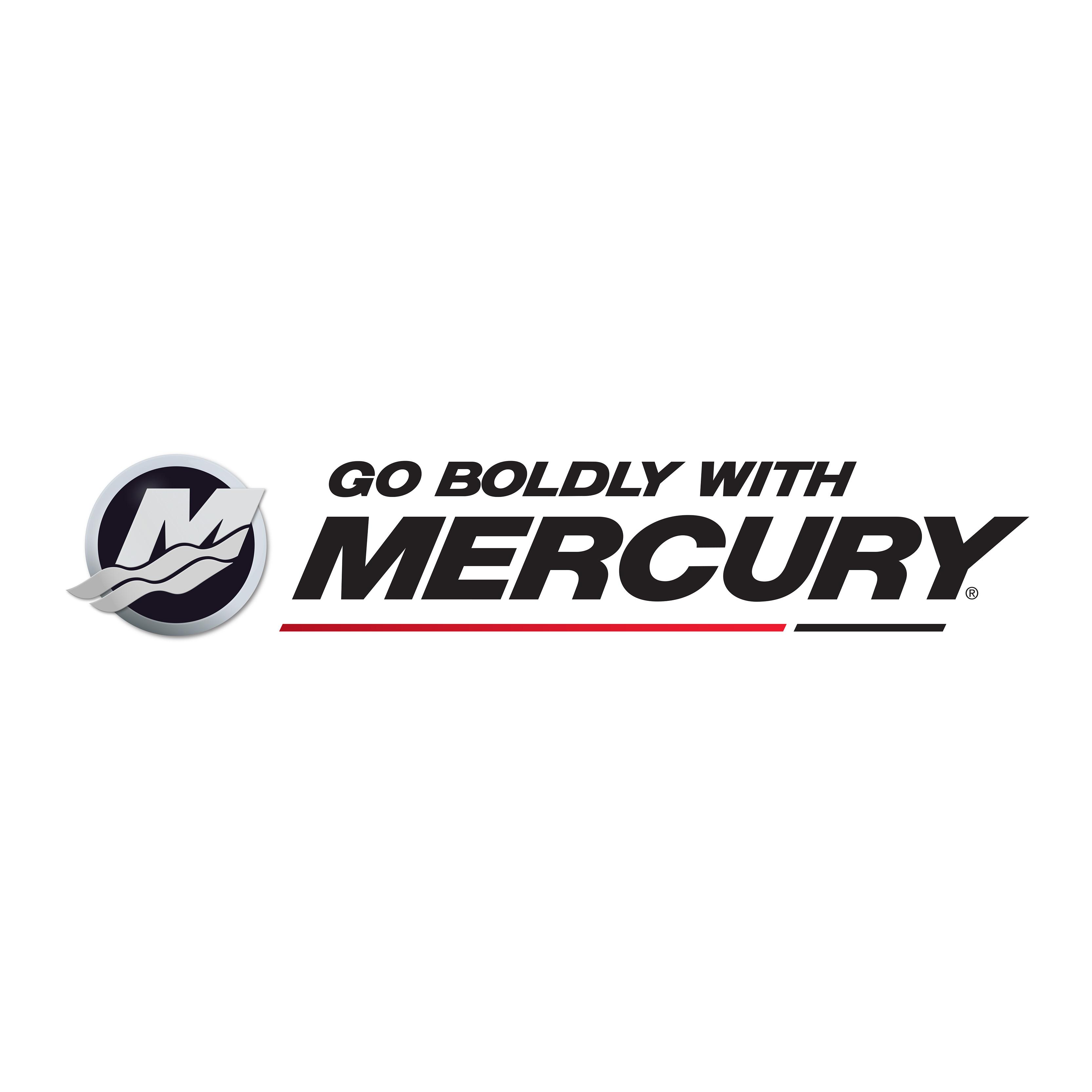 GoBoldly-OEM-WithMercury-Stripe